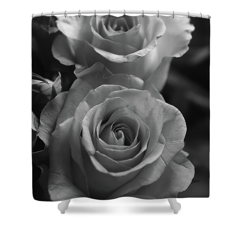 8bff54cbb Flowers Shower Curtain featuring the photograph Two Roses Black And White  by Jeff Townsend