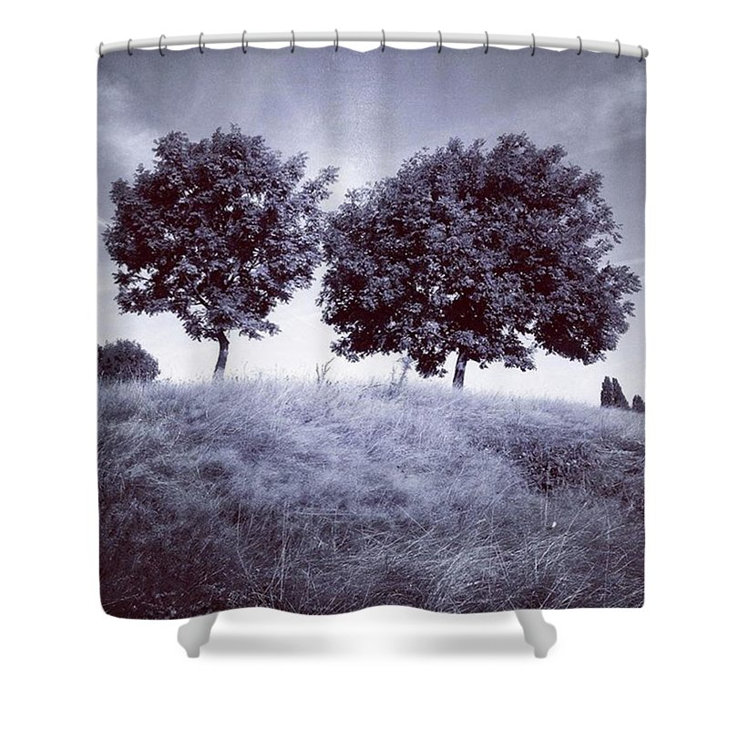 Snapseed Shower Curtain featuring the photograph Two Rowans The Cloddies, Nuneaton by John Edwards