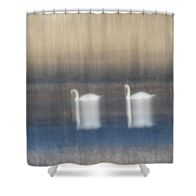 Swans Shower Curtain featuring the photograph Two Swans In Movement by Karol Livote