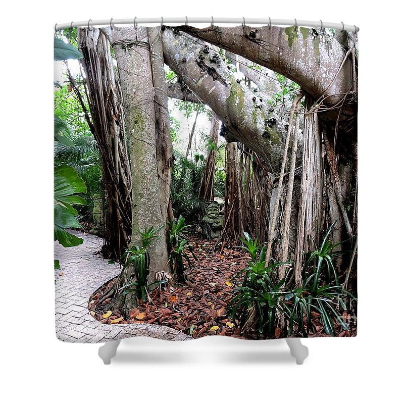 Dwarf Garden Shower Curtain featuring the photograph Under The Banyan Tree by Beth Williams