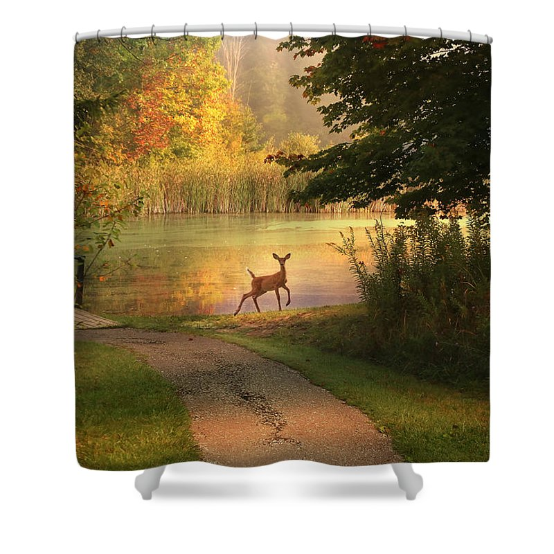 Shower Curtain featuring the photograph Unexpected Beauty by Rob Blair