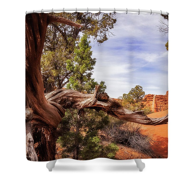 Colorful Shower Curtain featuring the photograph Unique Desert Beauty At Kodachrome Park In Utah by Daniela Constantinescu
