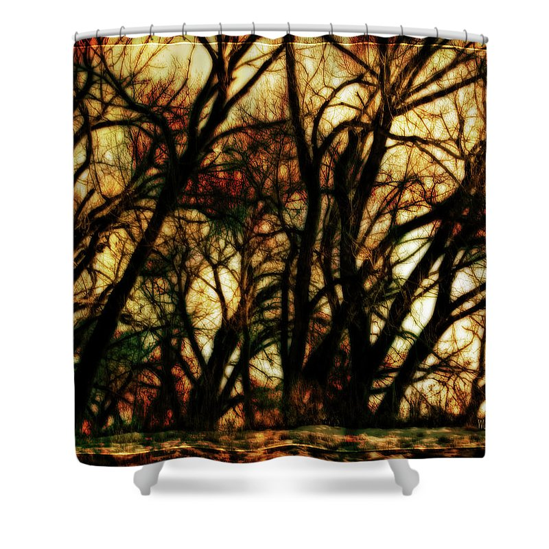 Bare Trees Shower Curtain featuring the photograph Unquenched Thirst by Mike Braun