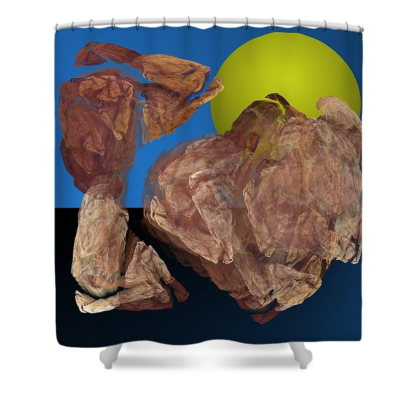 Digital Painting Shower Curtain featuring the digital art Untitled 01-16-10 by David Lane