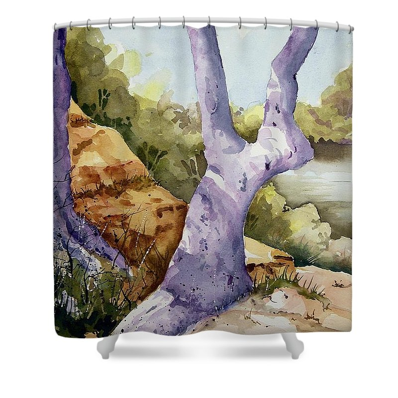 Tree Shower Curtain featuring the painting Untitled by Sam Sidders