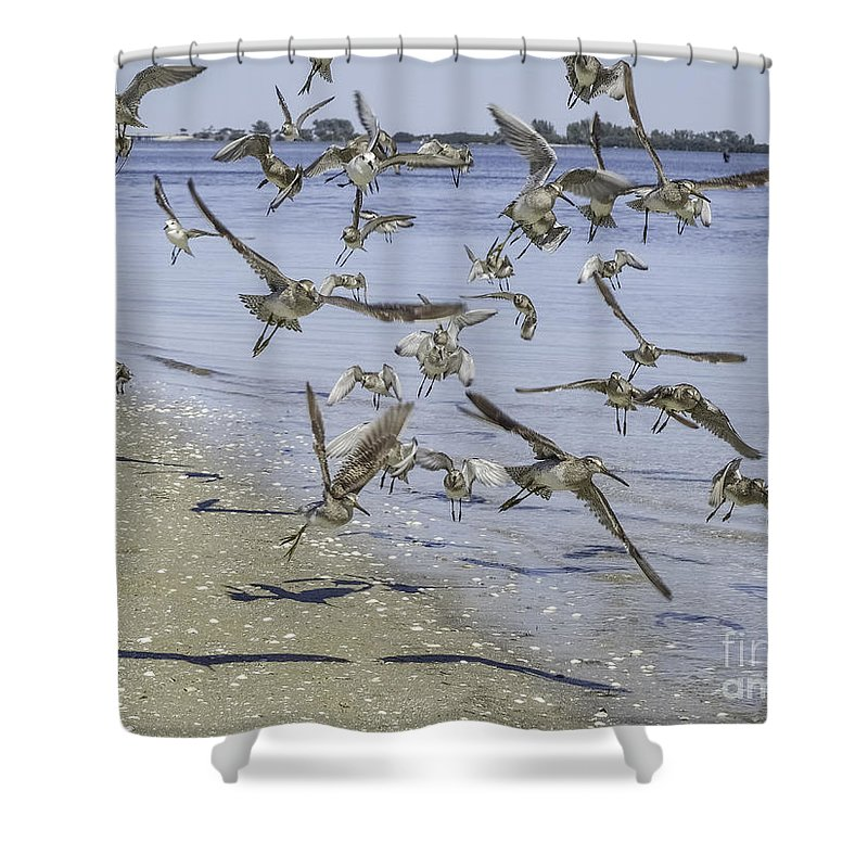 Up In The Air Shower Curtain featuring the photograph Up In The Air by Teresa A and Preston S Cole Photography
