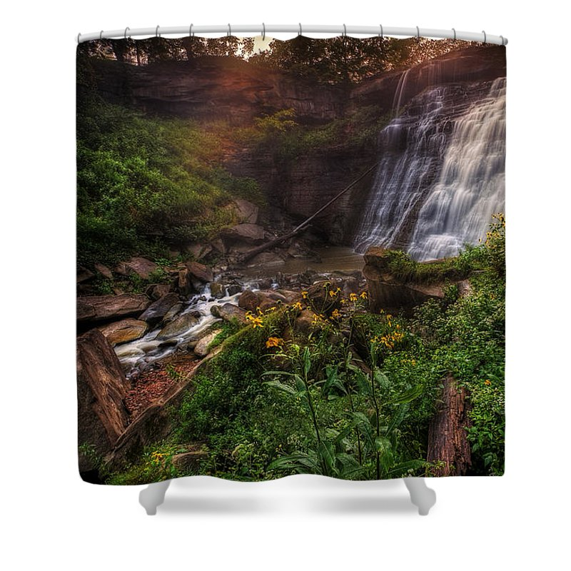 Waterfalls Shower Curtain featuring the photograph Valley Of Golden Light by Neil Shapiro
