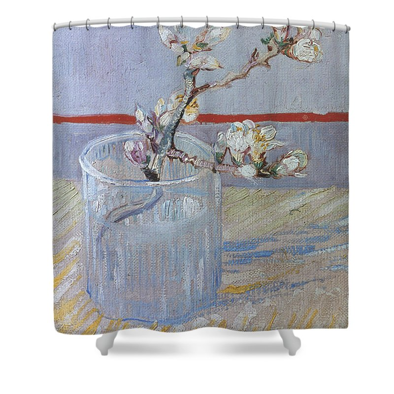 1888 Shower Curtain featuring the photograph Van Gogh: Branch, 1888 by Granger