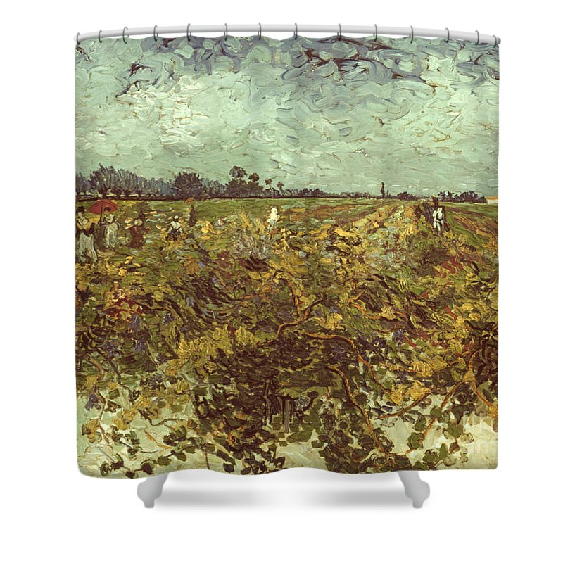 1888 Shower Curtain featuring the photograph Van Gogh: Vineyard, 1888 by Granger