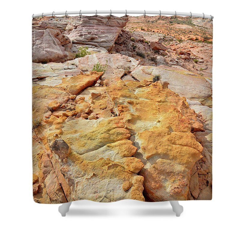 Valley Of Fire State Park Shower Curtain featuring the photograph Vein Of Gold In Valley Of Fire State Park by Ray Mathis