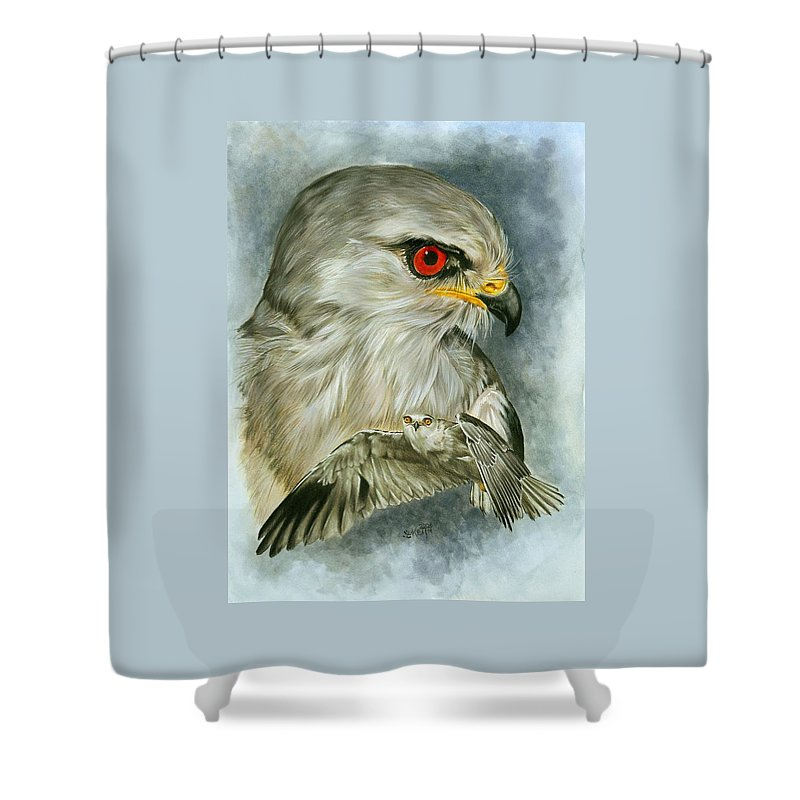 Kite Shower Curtain featuring the mixed media Velocity by Barbara Keith