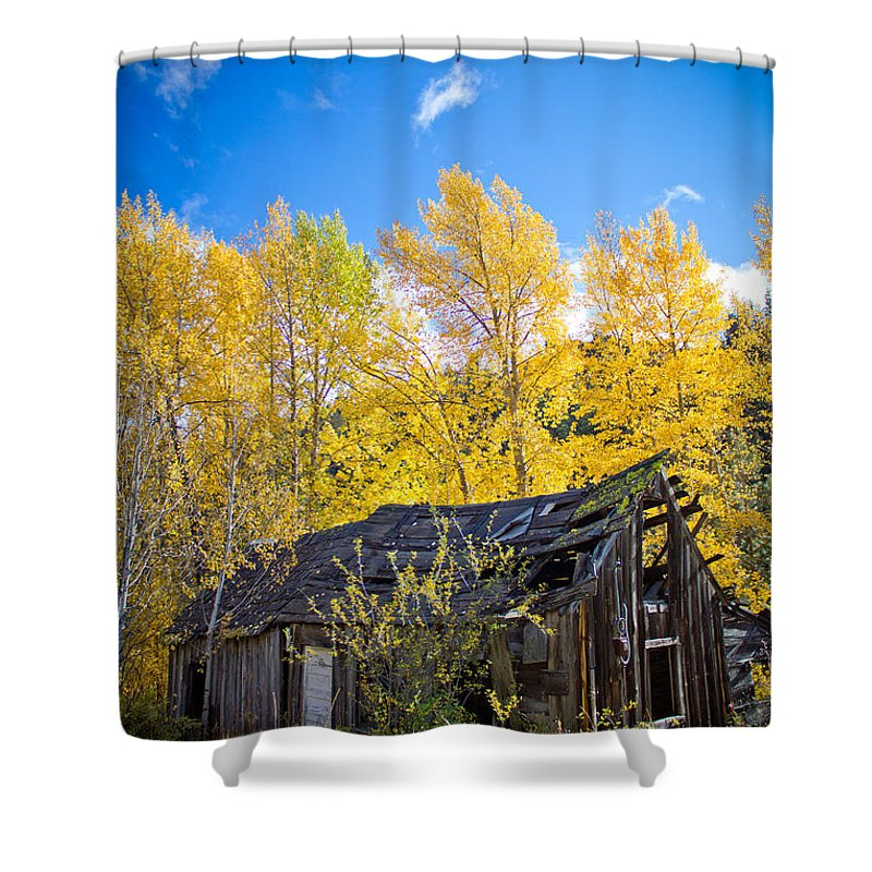 Abandoned Shower Curtain featuring the photograph Vertical Shot Of Meagher's Cabin by Daniel Brunner