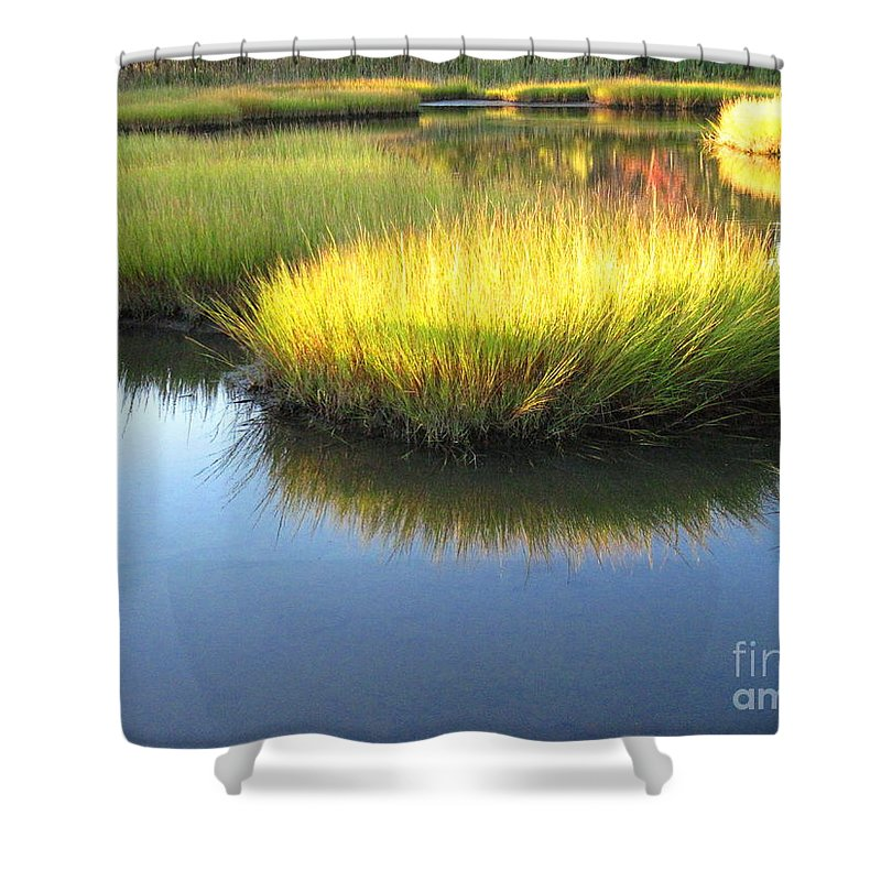 Water Shower Curtain featuring the photograph Vibrant Marsh Grasses by Sybil Staples