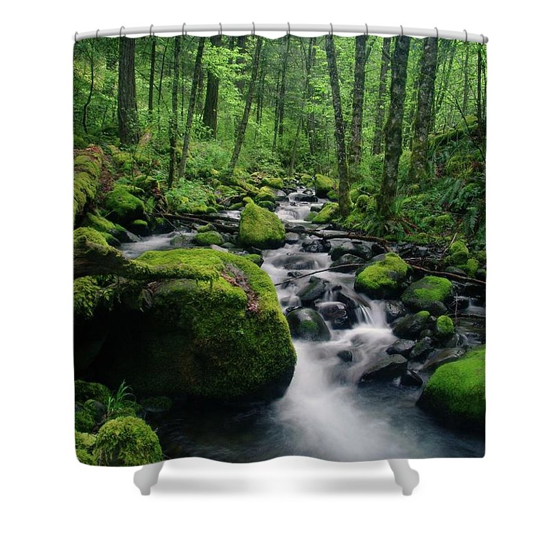 Water Shower Curtain featuring the photograph Viento by Jeff Swan