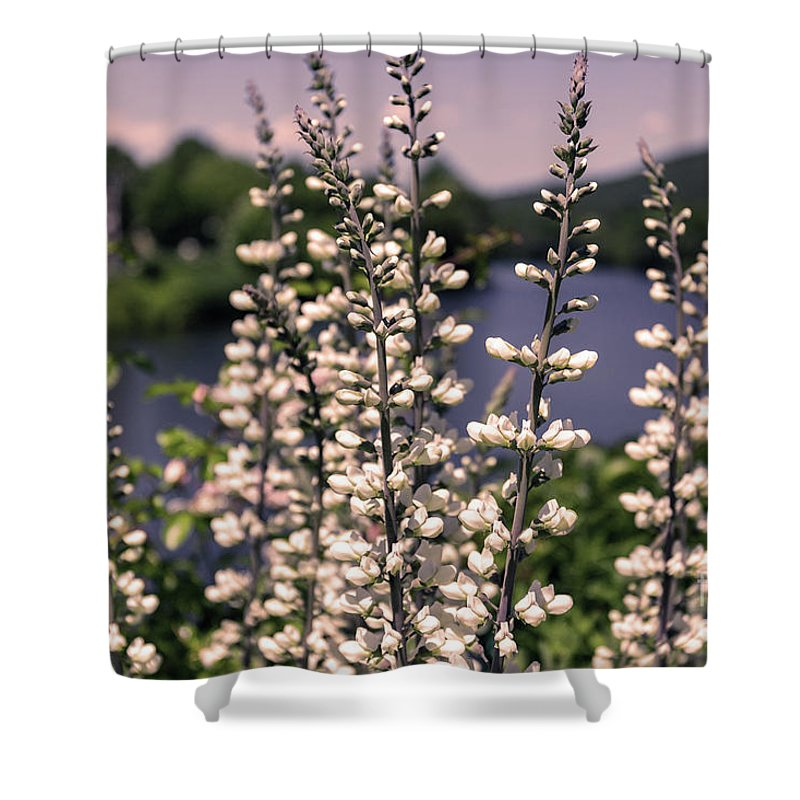 Bridge Of Flowers Shower Curtain featuring the photograph View From The Bridge Of Flowers by Bruce Coulter