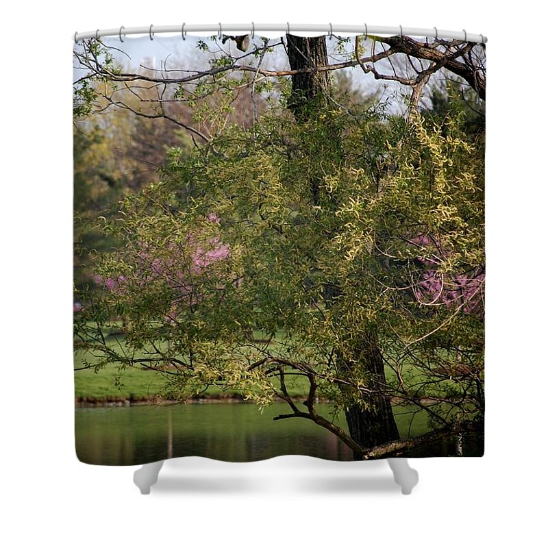 Landscape Shower Curtain featuring the photograph View Out My Office Window. by David Lane
