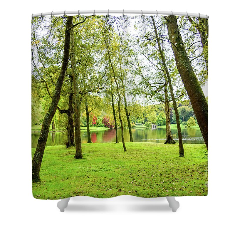 Trees Shower Curtain featuring the photograph View Through The Trees by Colin Rayner