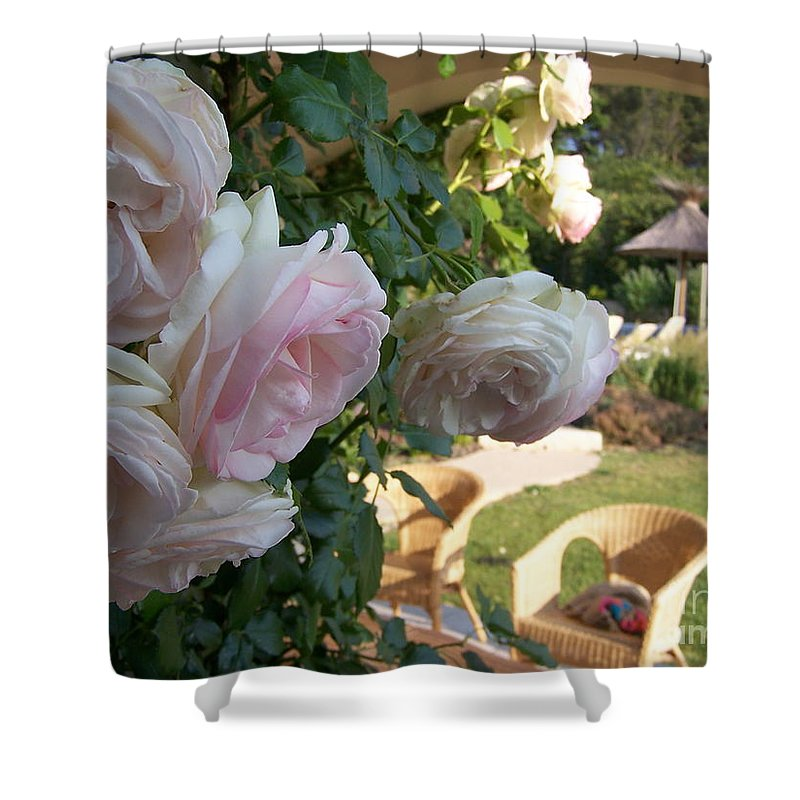 Roses Shower Curtain featuring the photograph Villa Roses by Nadine Rippelmeyer