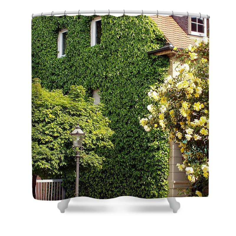 Building Shower Curtain featuring the photograph Vine Cover by Deborah Crew-Johnson