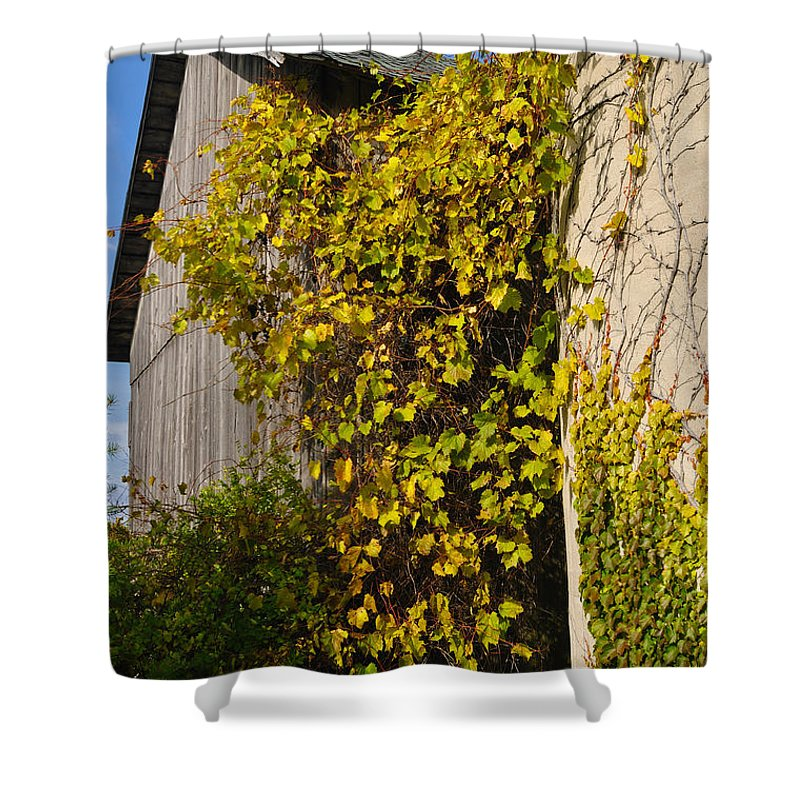 Silo Shower Curtain featuring the photograph Vined Silo by Tim Nyberg