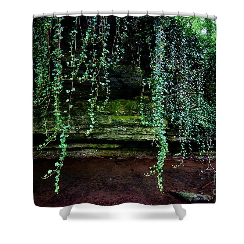 Vines Shower Curtain featuring the photograph Vines Flow Over Creek by Stanton Tubb