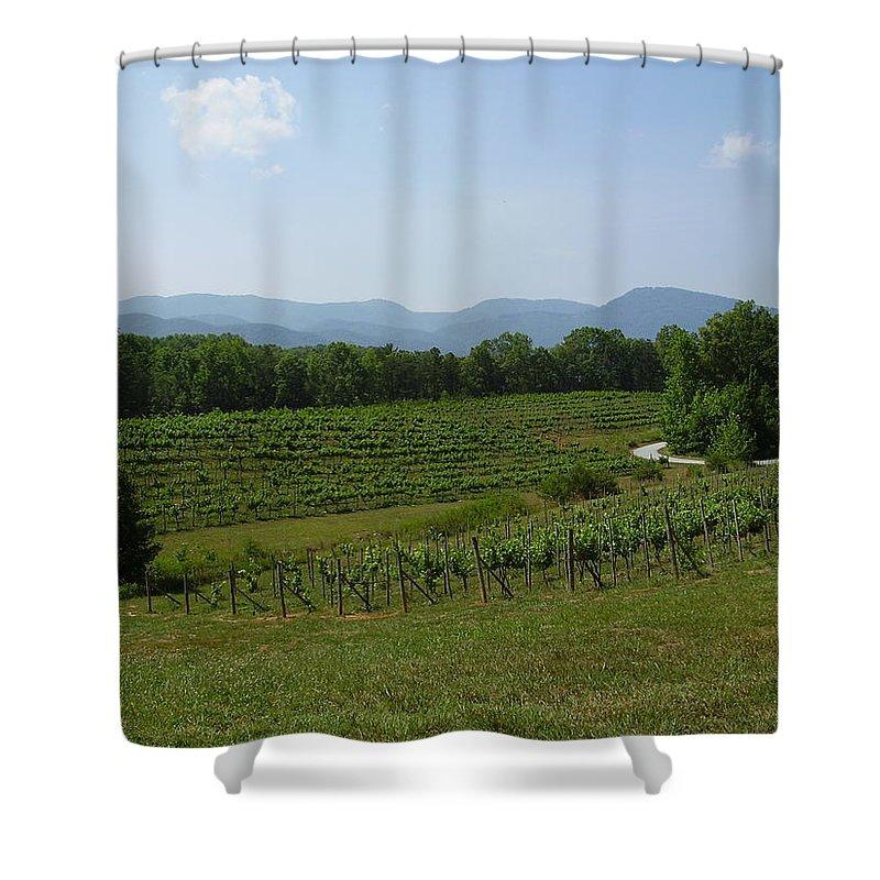 Vineyard Shower Curtain featuring the photograph Vineyard by Flavia Westerwelle