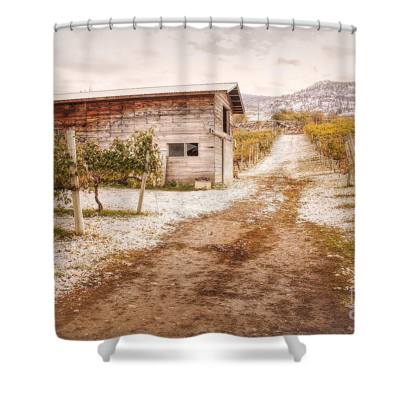 Orchards Shower Curtain featuring the photograph Vineyard Store House by Wendy Elliott