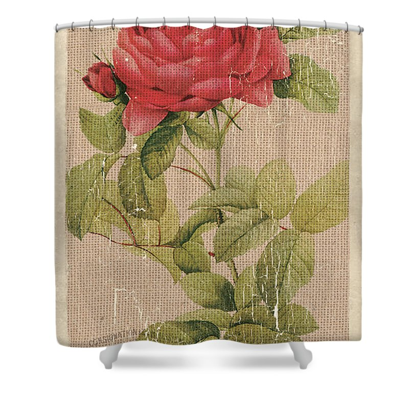 Shabby Chic Roses Shower Curtains