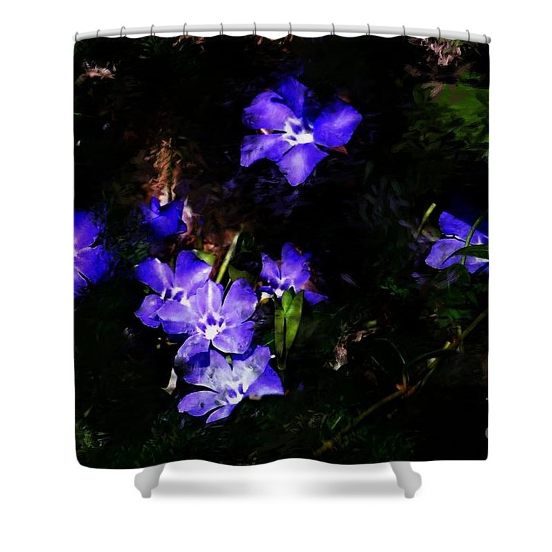 Spring Shower Curtain featuring the photograph Violet by David Lane