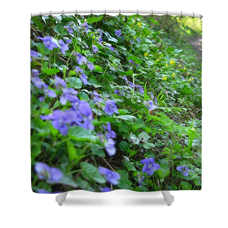 Violets Shower Curtain featuring the photograph Violets by Maria Joy