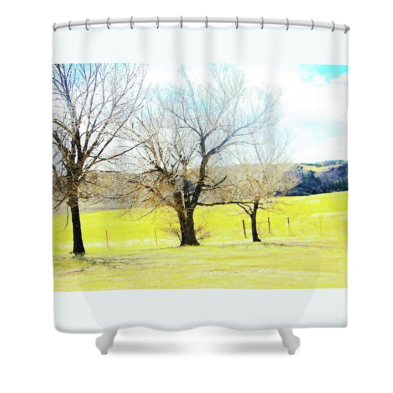 Abstract Shower Curtain featuring the photograph Virginia Dale-three Trees by Lenore Senior