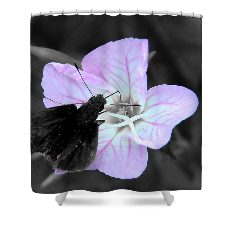 Nature Shower Curtain featuring the photograph Visitor by Wesley Nesbitt