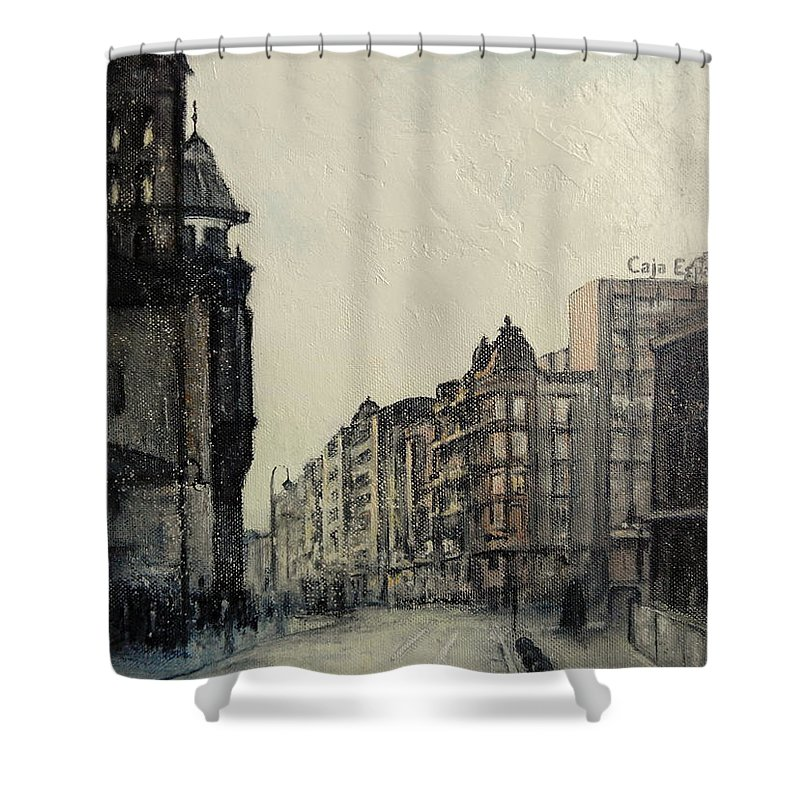Leon Shower Curtain featuring the painting Vista desde calle ancha-Leon by Tomas Castano