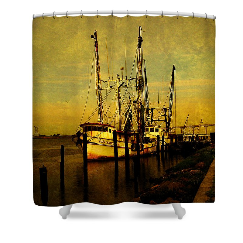 Rosa Marie Shower Curtain featuring the photograph Waiting For Tomorrow by Susanne Van Hulst