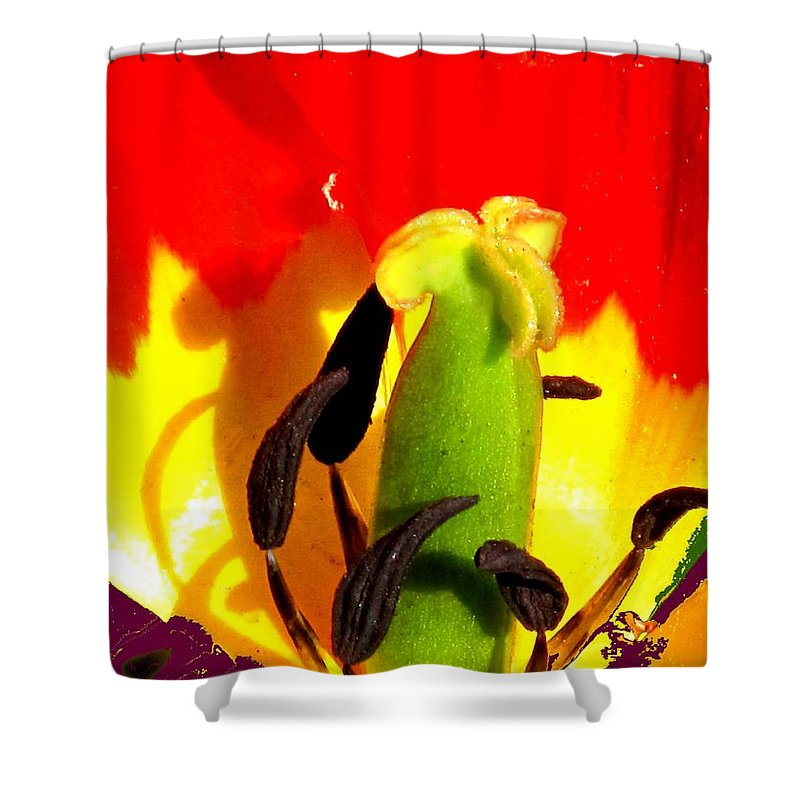 Abstract Shower Curtain featuring the photograph Waiting by Ian MacDonald