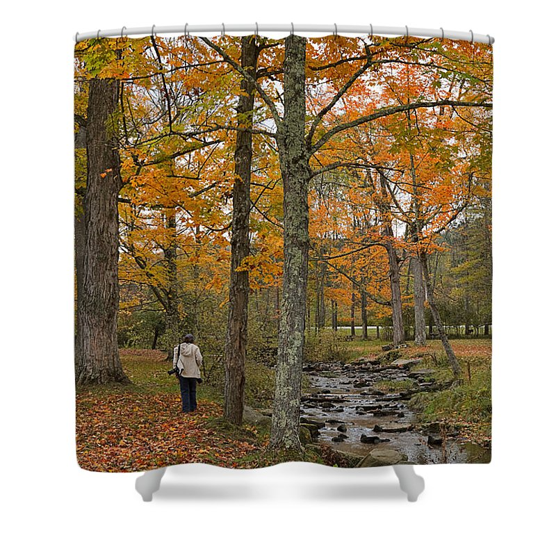 Nature Shower Curtain featuring the photograph Walking By The Stream by Louise Heusinkveld