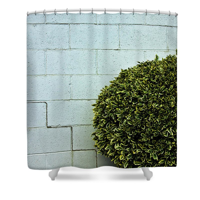 Wall Shower Curtain featuring the photograph Wall Art by Hannah Breidenbach