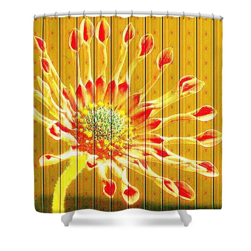 Flower Shower Curtain featuring the photograph Wall Flower by Tim Allen