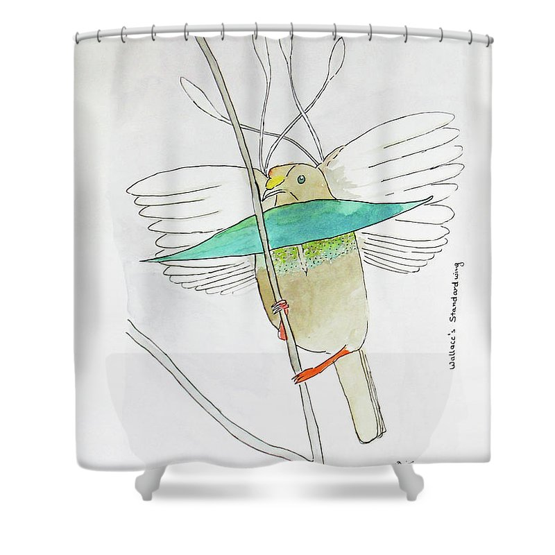 Bird Of Paradise Shower Curtain Featuring The Painting Wallaces Standardwing By Keshava Shukla