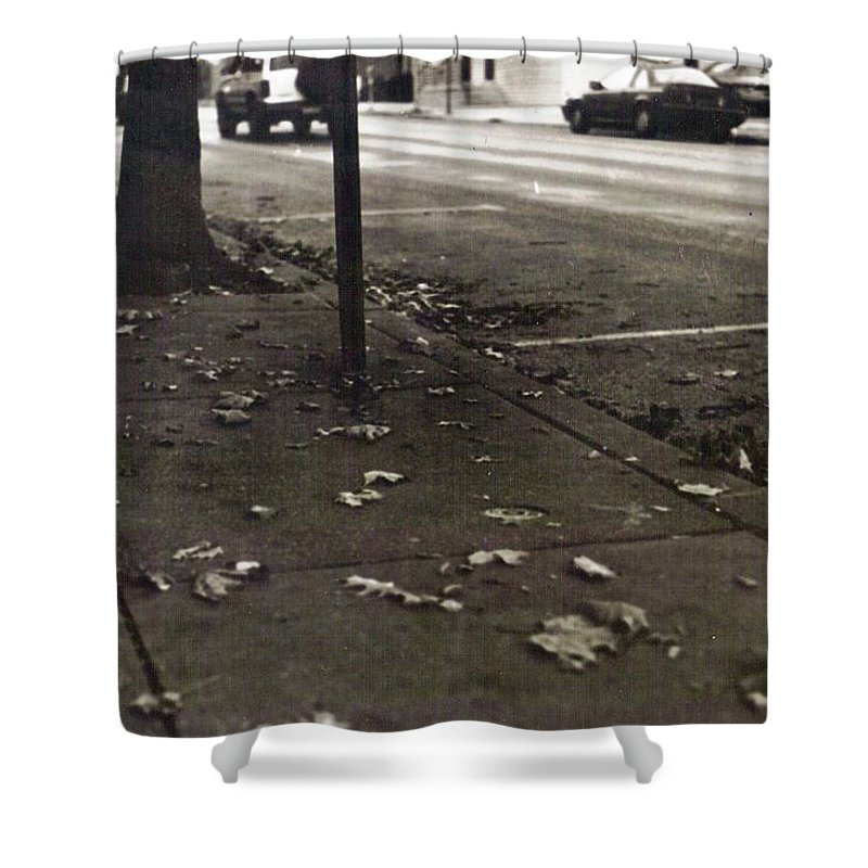 Black And White Photograph Shower Curtain featuring the photograph Walnut Street by Thomas Valentine