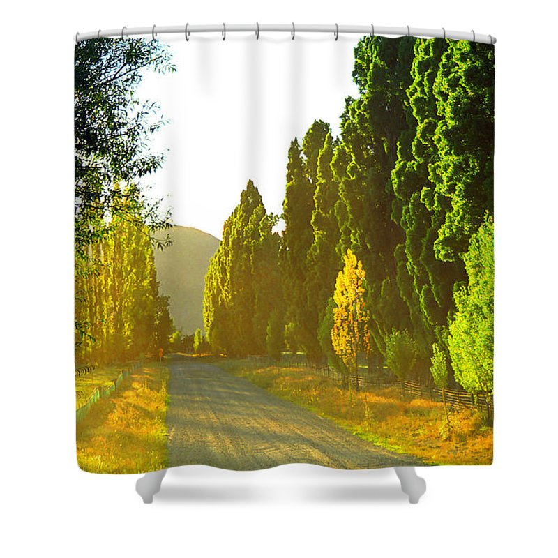 Wanaka Shower Curtain featuring the photograph Wanaka Morning Light by Kevin Smith