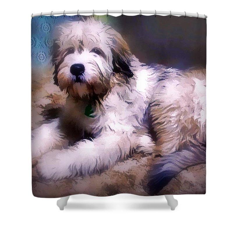 Dog Shower Curtain featuring the digital art Want A Best Friend by Kathy Tarochione