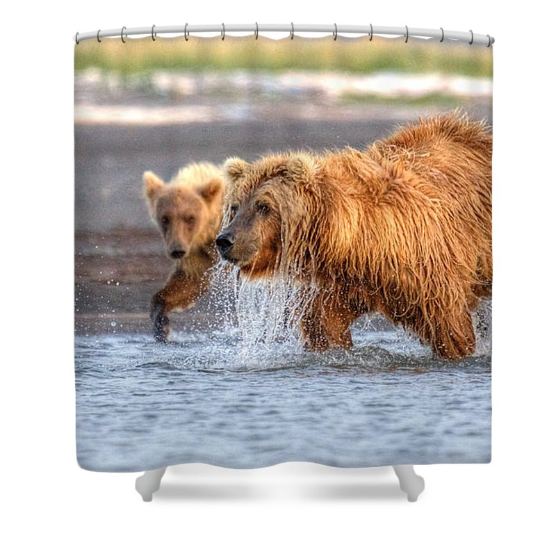 Grizzly Bear Shower Curtain featuring the photograph Watch How Ma Does It by James Anderson
