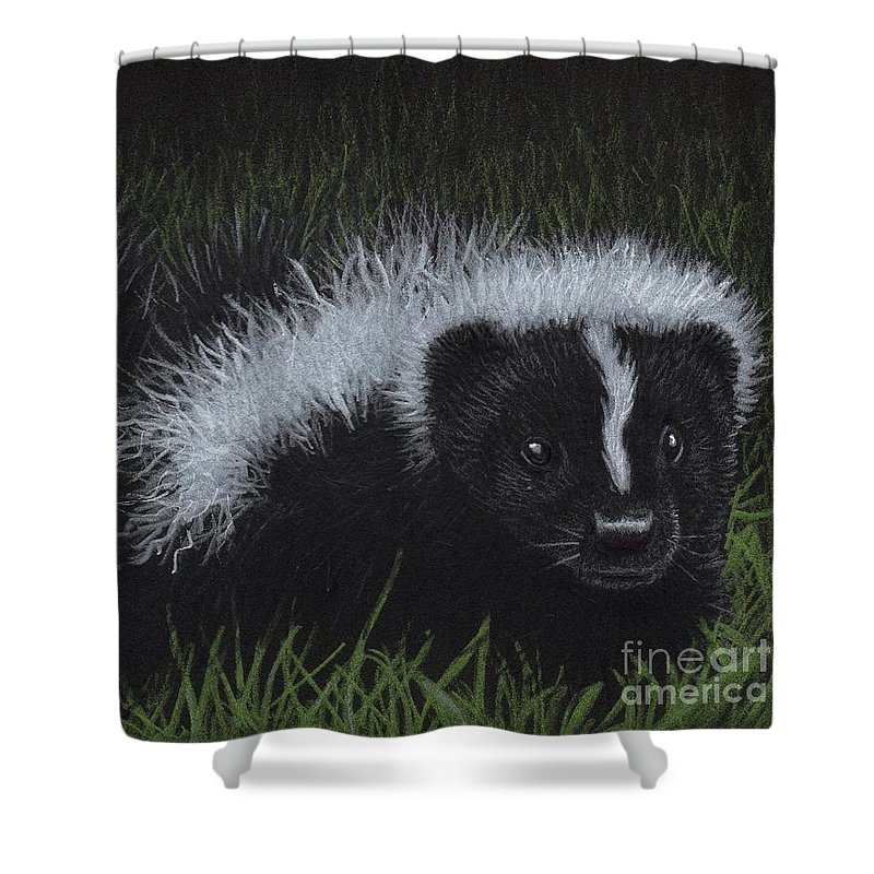 Skunk Shower Curtain featuring the painting Watch Out - There's A Baby Skunk In The Grass by Sherry Goeben