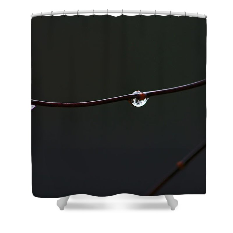 Water Shower Curtain featuring the photograph Water Drops by David Campbell