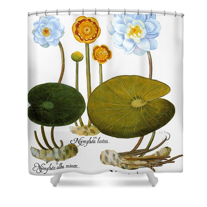 1613 Shower Curtain featuring the photograph Water Lily, 1613 by Granger