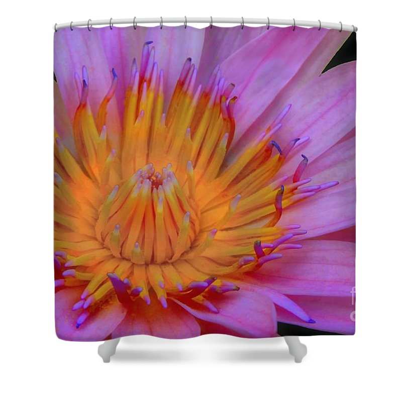 Flower Shower Curtain featuring the photograph Water Lily by DJ Florek