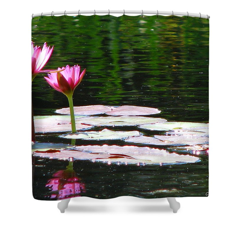 Patzer Shower Curtain featuring the photograph Water Lily by Greg Patzer