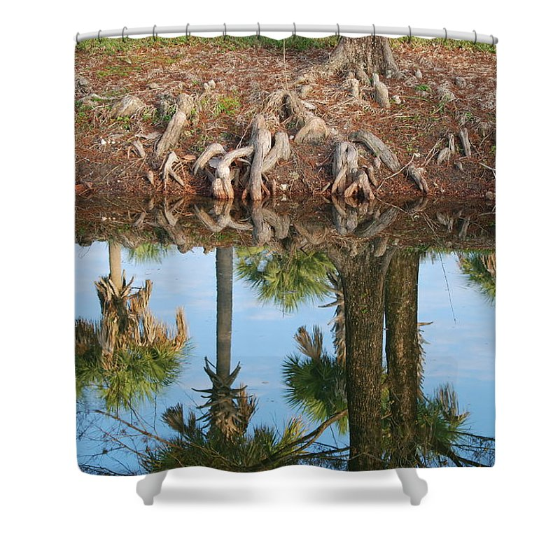 Roots Shower Curtain featuring the photograph Water Reflections by Rob Hans
