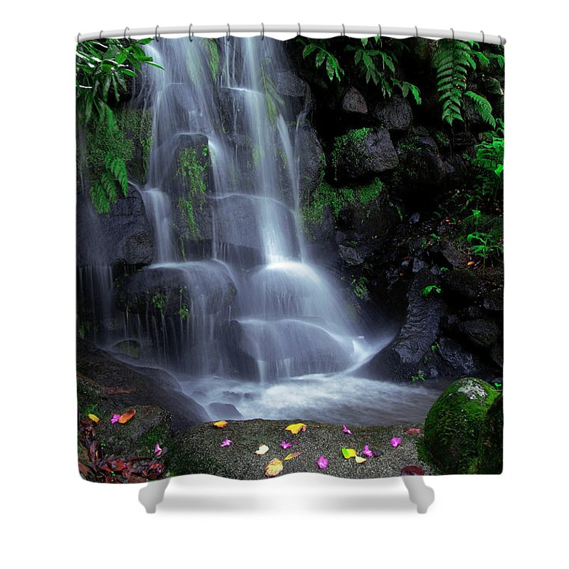 Autumn Shower Curtain featuring the photograph Waterfall by Carlos Caetano